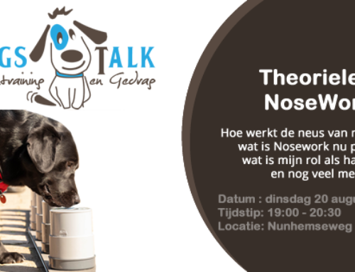 Theorieles Nose Work